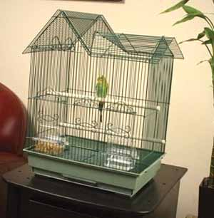 green ranch parakeet cage
