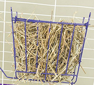 guinea pig hay rack