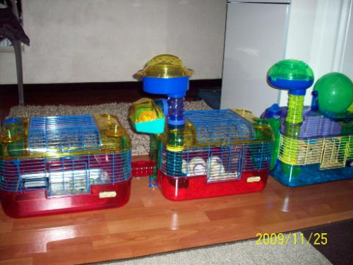 hamster tubes cage