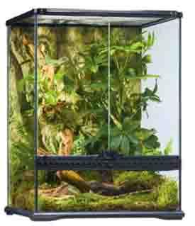 lizard cage kit