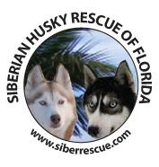 We are www.siberrescue.com