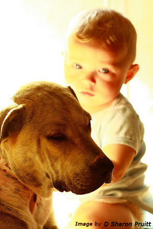 best pets for children