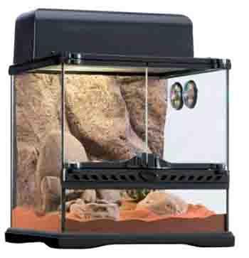 Desert Lizard Cage