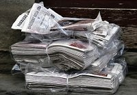 guinea pig bedding newspapers