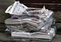 guinea pig bedding newspapers