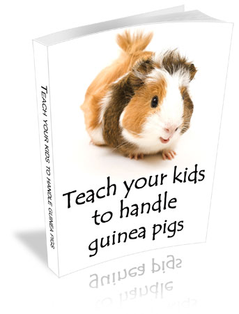 guinea pigs for kids book