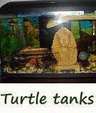 turtle tanks